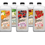 DaVinci Gourmet Natural Smoothies